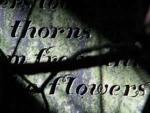 Thorns and flowers (again)