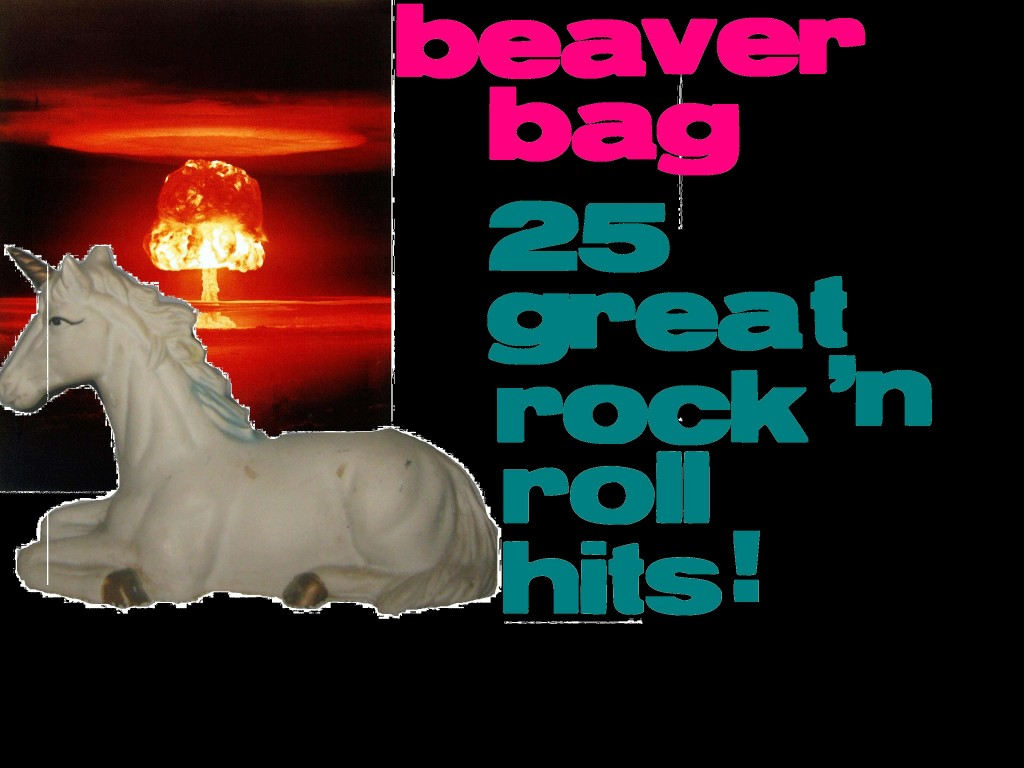 BEAVERBAGFRONYCOVER